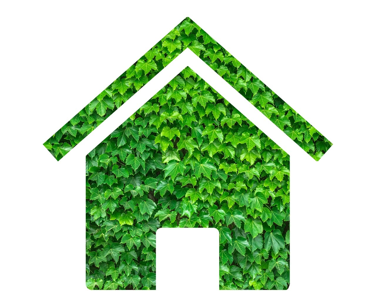 Image of Green Home Improvements
